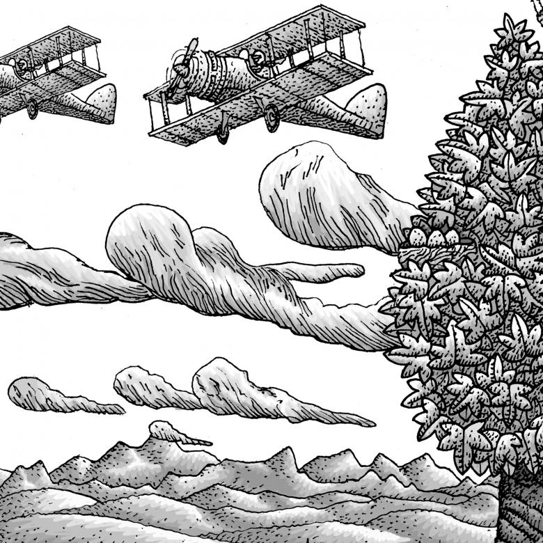 illustration detail